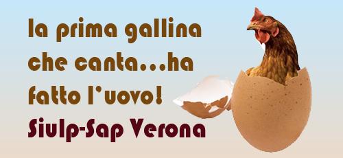 gallina2