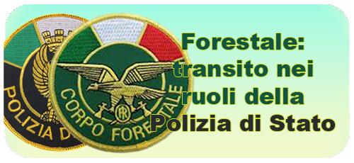 forestps