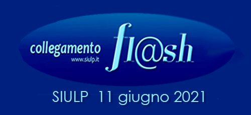 Flash23_2021