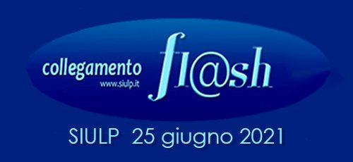 Flash25_2021